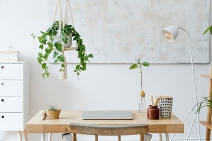 Wooden desk with plants and lamp