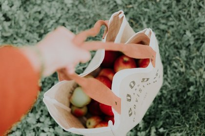 Bag filled with apples